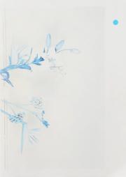 【古本】ヤープ・シェーレン写真集: JAAP SCHEEREN: FAKE FLOWERS IN FULL COLOUR