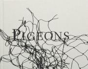 スティーブン・ギル写真集: STEPHEN GILL: PIGEONS