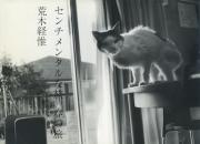 【古本】荒木経惟写真集: センチメンタルな旅 春の旅: NOBUYOSHI ARAKI