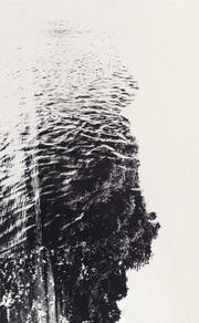 ポール・キュピドー写真集: PAUL CUPIDO: AMAZONIA