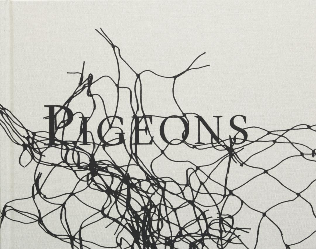 【古本】スティーブン・ギル写真集: STEPHEN GILL: PIGEONS