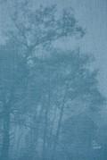 【古本】ドラガナ・ユリシチ写真集: DRAGANA JURISIC: YU: THE LOST COUNTRY