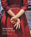 【古本】ヴィヴィアン・マイヤー写真集: VIVIAN MAIER: THE COLOR WORK