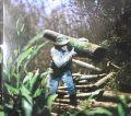 【古本】アレハンドロ・チャスキエルベルグ写真集: ALEJANDRO CHASKIELBERG: LA CRECIENTE