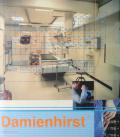 【古本】ダミアン・ハースト作品集 : DAMIEN HIRST : I WANT TO SPEND THE RESt OF MY LIFE EVERYWHERE,...