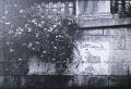 ジョシュ・ナイス写真集 : JOSH NICE: PARISIAN DOCUMENTATION #1