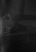 【サイン入】滝沢広写真集 : HIROSHI TAKIZAWA : SLEEP