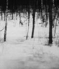 【古本】リャビシャ・ダニロヴィッチ写真集 : LJUBISA DANILOVIC : LE DESERT RUSSE