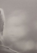【古本】オラ・リンダル写真集: OLA RINDAL: BLINDNESS (Pictures for another untold story)