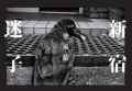 【古本】梁丞佑写真集: 新宿迷子: YANG SEUNG-WOO: SHINJUKU LOST CHILD