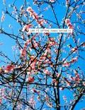 【古本】ソラブ・フラ写真集: SOHRAB HURA: LOOK IT'S GETTING SUNNY OUTSIDE!!!【サイン入】