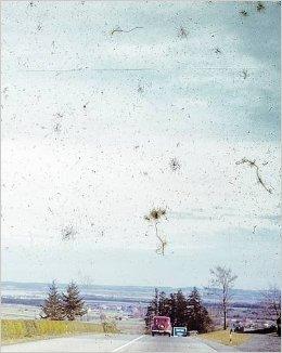 クリス・ドーレイ=ブラウン写真集 : CHRIS DORLEY-BROWN : THE LONGEST WAY ROUND