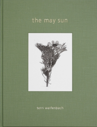 【古本】テリ・ワイフェンバック写真集 : TERRI WEIFENBACH : THE MAY SUN
