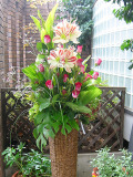 周年祝い 開業祝い スタンド装花 新宿花屋フラワーショップアイビー