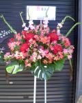 開店祝い スタンド花 新宿 歌舞伎町 フラワーショップアイビー