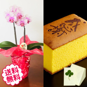 [敬老の日]テーブル胡蝶蘭2本立&敬老の日メッセージ焼印入り烏骨鶏極かすてら