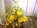 黄色系のアレンジンント【5A-1101】