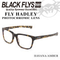 ブラックフライ サングラス 2018 BLACK FLYS FLY HADLEY フライ へドリー 調光レンズ [HAVANA AMBER PHOTO] [BF-1307-02]