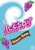 サーフィン dvd ハイチューブ Vol.3 HIGH TUBE 最終回 Akkan Beee あっかんべぇー ジョンジョン SURF