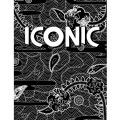 18-19 スノーボード DVD ICONIC