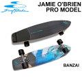 Swell Tech  スウェルテック スケートボード 36インチ JAMIE O'BRIEN Pro Model BANZAI [S-5] コンプリート サーフスケート サーフィン トレーニング
