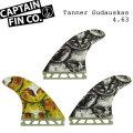 """[9月30日まで期間限定価格] CAPTAIN FIN キャプテンフィン TANNER GUDAUSKAS ART 4.63"""" futureフィンプラグ ショートボード用 トライフィン TRI FIN"""