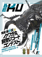 BE-KUWA 81号 発表!第21回クワガタ飼育レコード