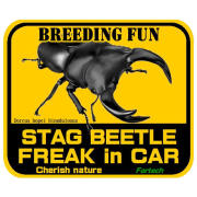 【Fortechオリジナルステッカー】 STAG BEETLE FREAK in CAR