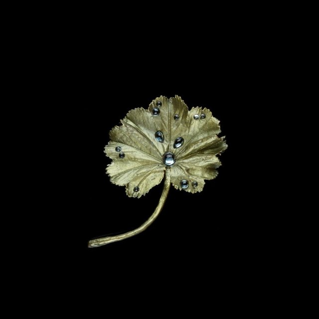Michael Michaud(マイケルミショー)のアクセサリー。自然をモチーフにしたネックレスやピアス。