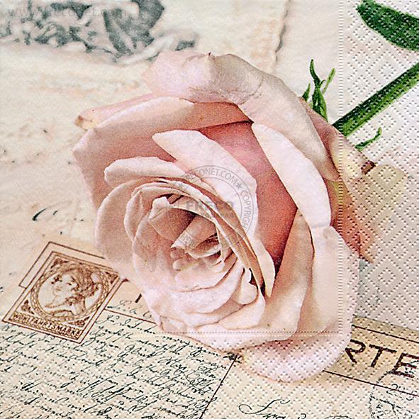 Paper+Design ペーパーナプキン <ランチ> Postcard rose(21704)【宅急便配送】