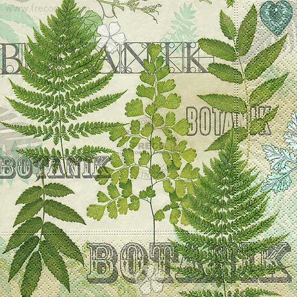 Paper+Design ペーパーナプキン <ランチ> Botanic garden(200096)【宅急便配送】
