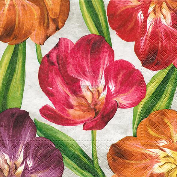 Paper+Design ペーパーナプキン <ランチ> Tulipani(21908)【宅急便配送】
