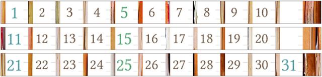 台湾 青青文具 KEEP A NOTEBOOK 日付マスキングテープ3巻セット Align(CKN-016 A)【ネコポスOK】