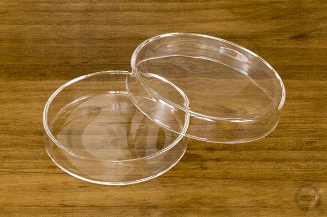 LABO GLASS SCHALE Sサイズ(YMGR2012)【宅急便配送】