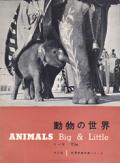 動物の世界