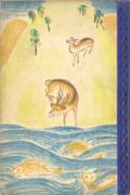 魚の世界・獣の世界 小学生全集33