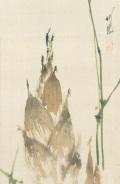 尾竹竹坡 筍図