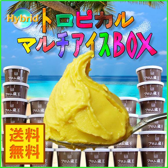 【送料無料】フロム蔵王 Hybrid★★トロピカルマルチアイスBOX24【アイスクリーム】