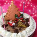 [11/30(24:00)迄早割]★Xmas★Newデコレーションアイスケーキ【送料無料】