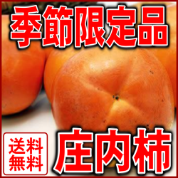 贈り物に山形県産庄内柿