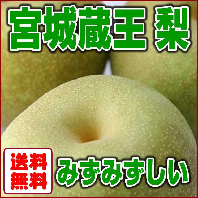 宮城県産蔵王梨を送料無料