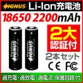 【Bonds&Bonfires】【IGNUS (イグナス)シリーズ】専用リチウムイオンバッテリー 2200mAh 2本セット
