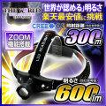 LED ヘッドライト LEDライト MAX600LM(ルーメン)1灯LED 照射距離370メートル HL-002 CREE社 THE WORLDヘッドライト fl-head-002 【本体のみ】