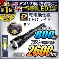 LED懐中電灯 LEDライト 強力 2600ルーメン相当 ハンディライト 乾電池使用可  IG-T1-02Z 2 IGNUS イグナス fl-ig014
