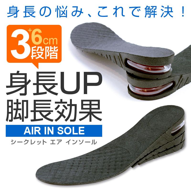 シークレットインソール インソール 中敷き 靴 zak-insole-bk