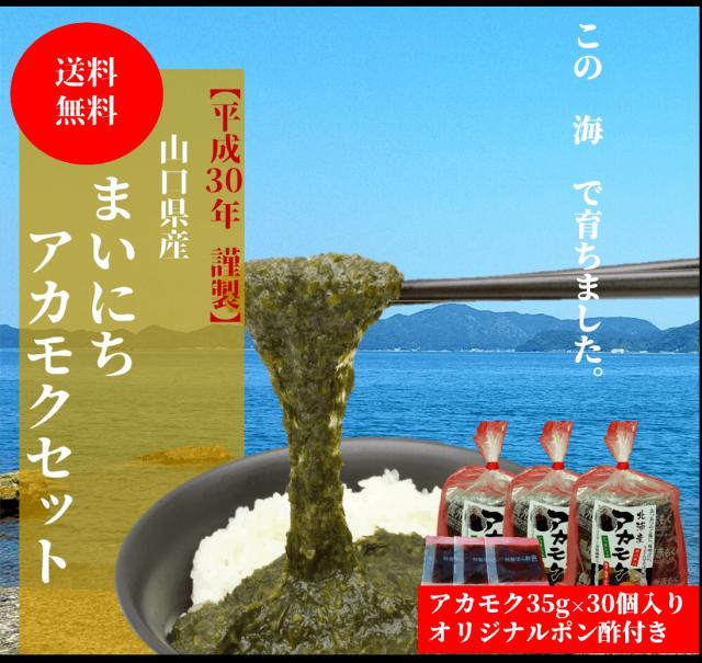 ☆【送料無料】 まいにちアカモクセット 35g×30袋 【専用ポン酢つき】