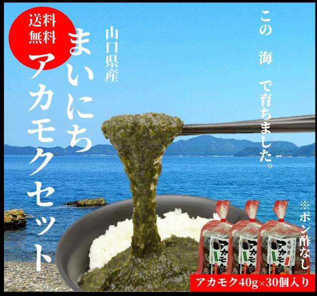 ☆【送料無料】 長州赤もく 40g×30袋 ※ポン酢はついておりません