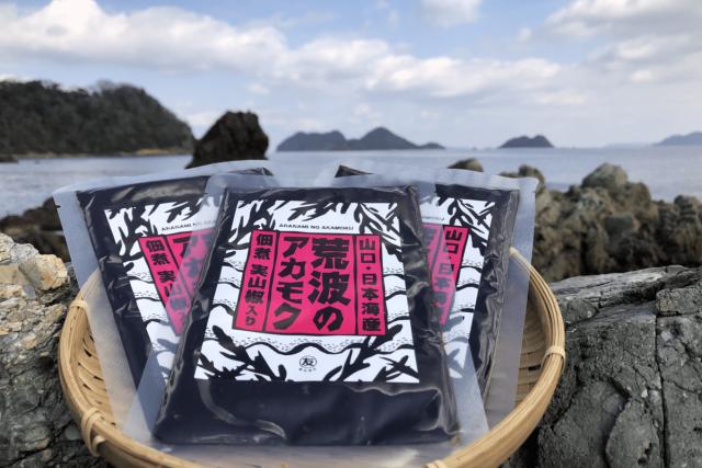 【送料無料】 アカモクの佃煮 100g×3袋  【実山椒入り】