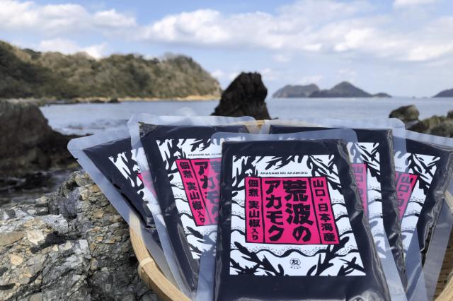 【送料無料】 アカモクの佃煮 100g×5袋  【実山椒入り】