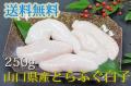 焼き物、天ぷら、お鍋に。高級食材、国産とらふぐ白子。